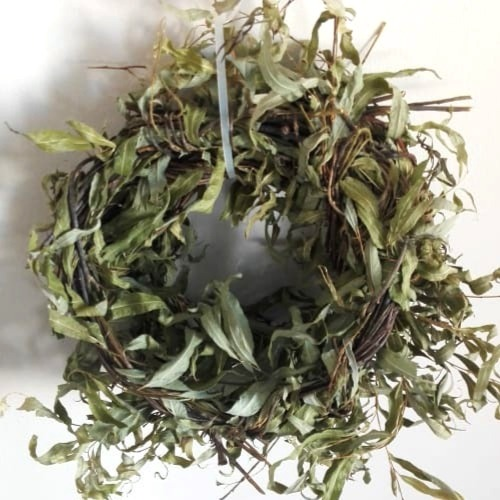 Willow Leaved Wreaths